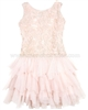 Biscotti Filigree Splendor Pink Drop Waist Dress