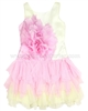 Biscotti Girls Pink Dress with Rose Print Pick a Posy