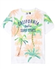 3Pommes Boy's T-shirt with Palm Print Miami Vice