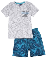 Quimby Boys T-shirt and Palm Print Swim Shorts Set