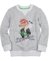 s.Oliver Boys' Sweatshirt with a Dinosaur Print
